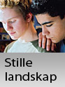 Film: Stille Landskap
